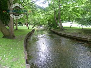 Beddington River Wande