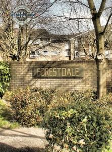 Forestdale Fence