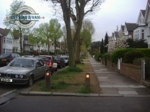 East-Sheen-Trees